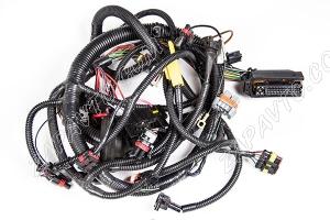 Жгут проводов системы зажигания Приора 2170-3724026-60